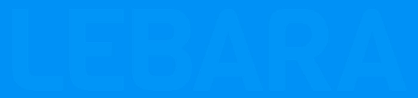 """Logo for """"Lebara"""""""